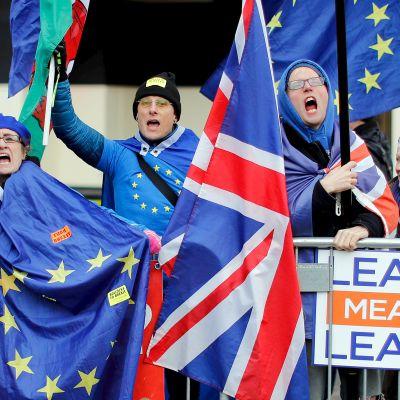 Brexitin vastustajat osoittivat mieltään parlamenttitalon edustalla Lontoossa maanantaina.