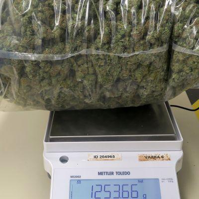 marihuanapaketti