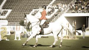 Hevonen ja ratsastaja esteratsastusradalla