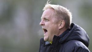 Jarkko Wiss har imponerat som tränare för Ilves.