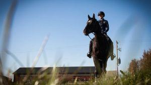 Hevonen ja ratsastaja tallin edessä