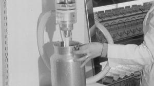 Myyjä laskee irtomaitoa asiakkaan kannuun myymälässä vuonna 1967.