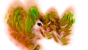 """Biovisualisering av en njure, """"The Breathing Kidney"""""""
