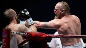 Robert Helenius boxas mot Franz Rill 2015.