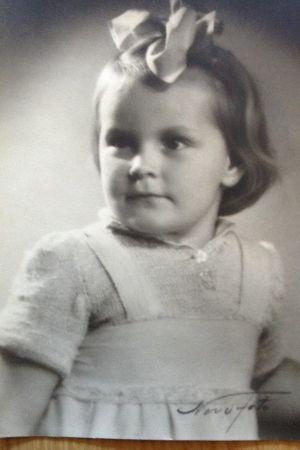 Bild på en liten Vips Wikholm