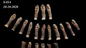 Fynd från egyptisk utgrävning