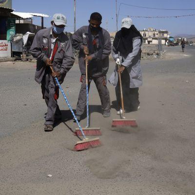 Katua harjataan Jemenin pääkaupungissa Sanaassa.