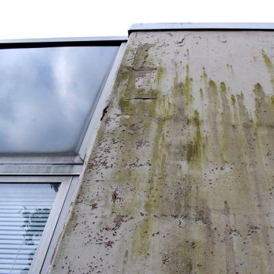 En möglig och söndrig fasad.