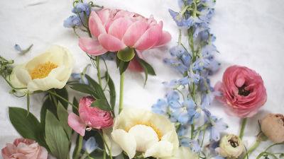 Blommor ersatte hakkors