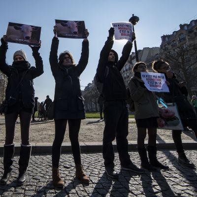 Vegaaniaktivistit osoittivat mieltä Pariisissa 24. helmikuuta 2018.