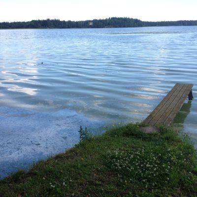 Söndagens regnskur hade en hämmande effekt på algerna.