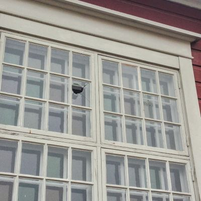 trasigt fönster