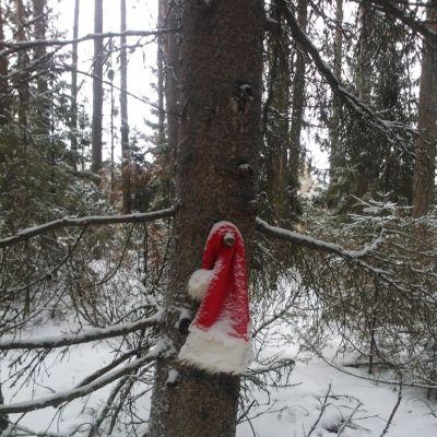 Julbocken tappade sin mössa