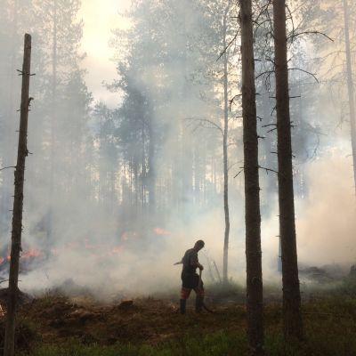 Kulotusta Helvetinjärven kansallispuistossa