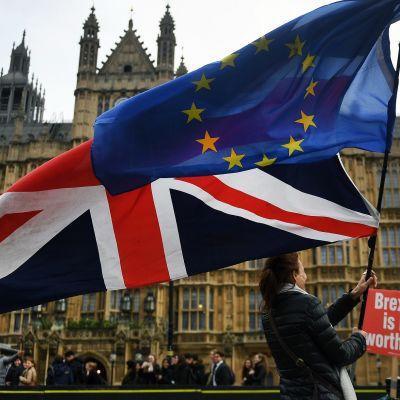Mielenosoittaja heiluttaa Britannian ja EU:n lippuja Lontoossa parlamenttitalon edustalla.