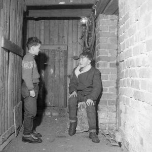 Kellarissa asuva perheen pojat kellarikäytävällä (1956)