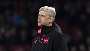 Arsene Wenger ser sitt Arsenal spela mot Röda Stjärnan.