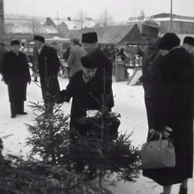 Kuusikauppiaita ja kuusenostajia Helsingissä 1958