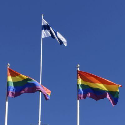 En person cyklar förbi stadshuset i Helsingfors. På taket fladdrar regnbågsflaggor.