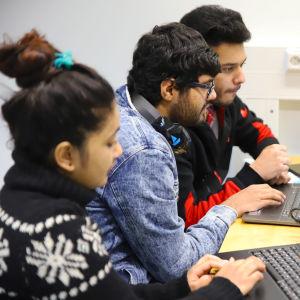 Tre studerande från Indien och Nepal, Elisha Baniya, Dhruv Verna och Vinayak Chaturvedi, sitter framför sina datorer och studerar.