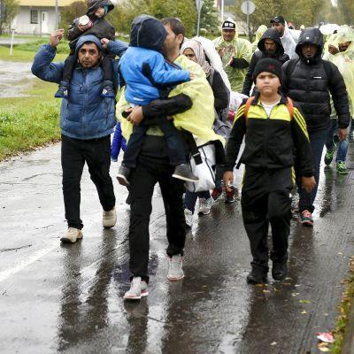 Turvapaikanhakijat joutuivat kävelemään rankkasateessa matkakeskuksesta Lappia-talaon vastaanottokeskukseen Torniossa 18. syyskuuta.