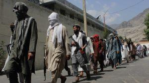 Rädslan är stor för att talibanrebeller tågar in i städer igen om fältet är fritt. Bilden är från provinsen Wardak år 2019.