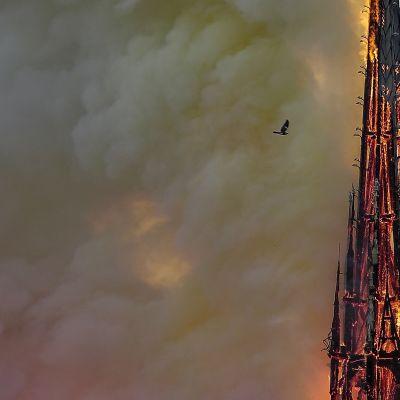 Notre Damen katedraali kärsi pahoin 15. huhtikuuta syttyneessä palossa. Tässä liekehtii kuuluisa torni.