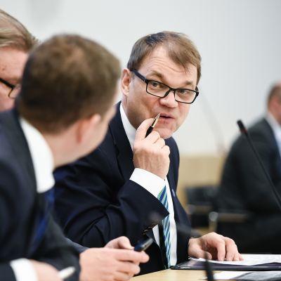 Petteri Orpo, Timo Soini ja Juha Sipilä.