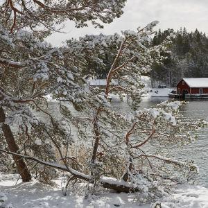 Snöigt landskap med en vik och ett båthus i bakgrunden