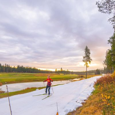 Hiihtäjä ja maastopyöräilijä Kittilän Levillä.