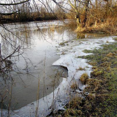 Vantaanjoki virtaa vuolaana ja vapaana jäästä Vantaan Tammistonrannassa.