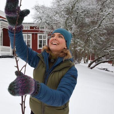 Lena Gillberg visar med vanten var hon ska klippa toppen på ett äppelträd