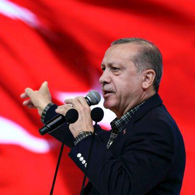 Turkin presidentti Recep Tayyip Erdoğan pitämässä puhettaan Istanbulissa. Takana liehuu punainen Turkin lippu.