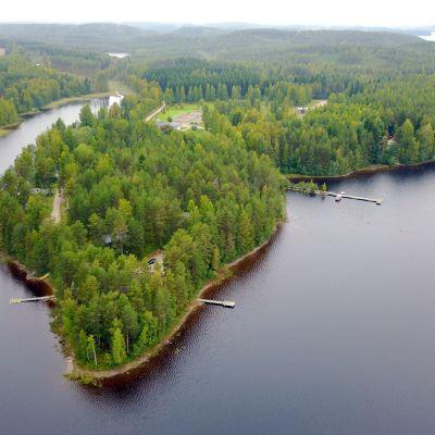 Mannilanniemi sijaitseee Puumalan Ryhälässä, Haapaselän rannalla.