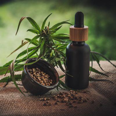 En cannabisplanta ligger på vävt tyg med en mortel av frön och en liten flaska med pipett-kork.