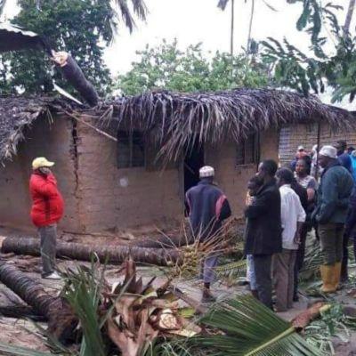 Flera människor betraktar hur stormen fällt ett träd över ett hus och skadat dess tak.