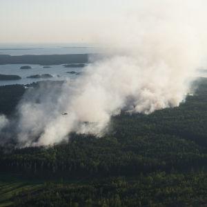 Vy över skogsbrand med kraftig rökbildning.