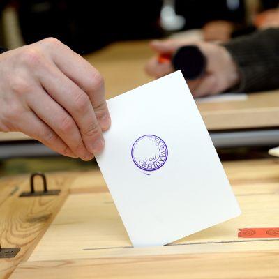 Vaalilipuke