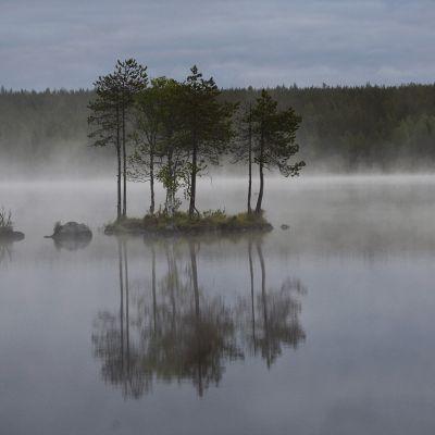Järvimaisema Kuusamosta.