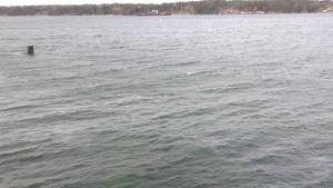misstänkt oljeläckage vid färjpasset nagu-korpo oktober 2014