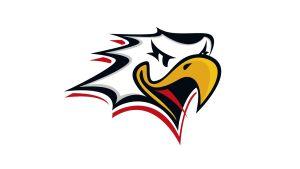 Vasa Sport logo.