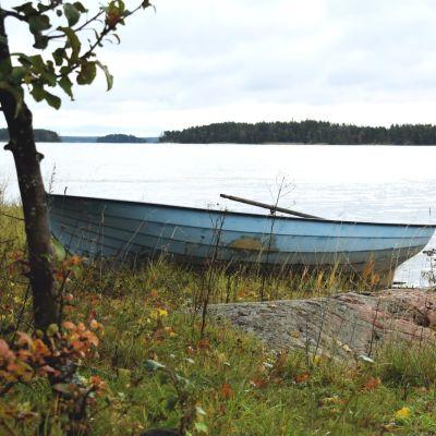En roddbåt uppdragen på land på en höstig strand.