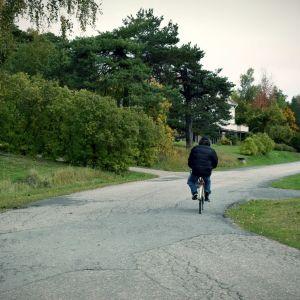 En gammal farbror cyklar iväg från fotografen på en liten byaväg.