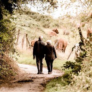 Ett äldre par vandrar längs en stig intill en hästhage.