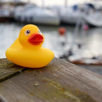 En gul anka på ett träräcke, segelbåtar i bakgrunden.