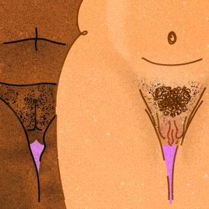Piirretty kuva: Kaksi alastonta alavartaloa, joissa vulvat. Toinen vartalo väriltään ruskea, toinen vaalea.