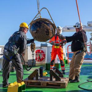 Forskare på Aranda hanterar en vågboj på däck.