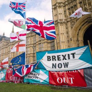 Utanför parlamentsbyggnaden i London syns flaggor och skyltar.