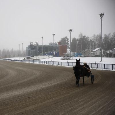 Kouvolan raviradalla raviohjastaja ajamassa hevosvaunulla.