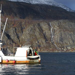 Räktrålaren Marina på Lyngenfjorden